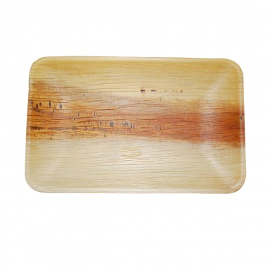 "9""x6"" Rectangle Plate(25 pieces)"