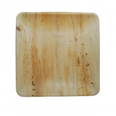 """10""""X10"""" Square Plate(25 pieces)"""